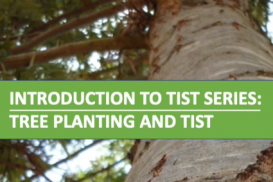 2. Intro to TIST Series: Tree Planting and TIST